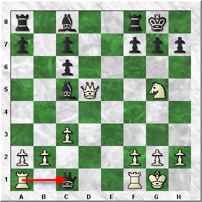 How to Read and Write Chess Notation - Rook captures Queen on c1
