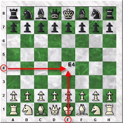 In The Following Diagram I Made The First Move Pawn To E4. The Name Of This  Move Is Simply U201ce4u201d. (since The Pawnu0027s Name Is Not Written)
