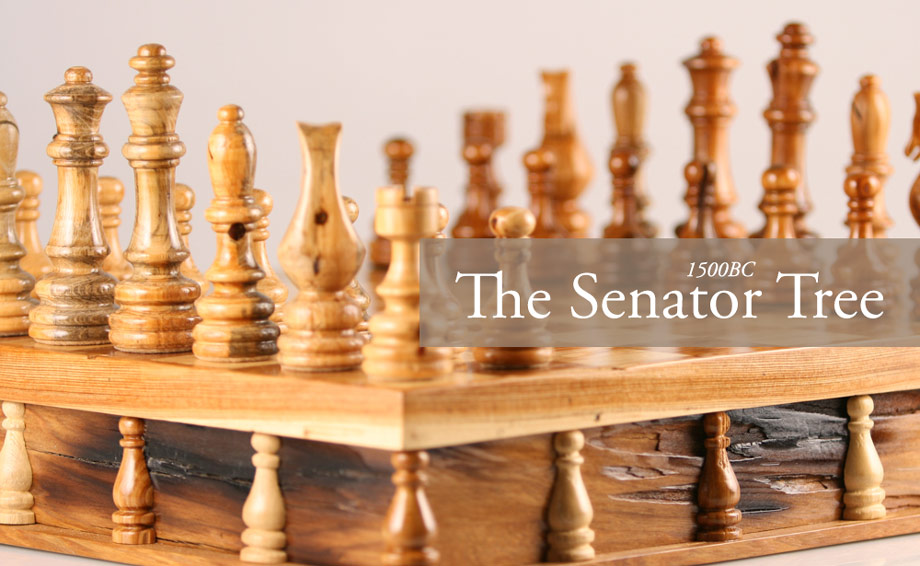 Beauty for Ashes: Fire Destroys 3,500 Year Old U.S. Senator Tree – Legacy Preserved in Historic Chess Set